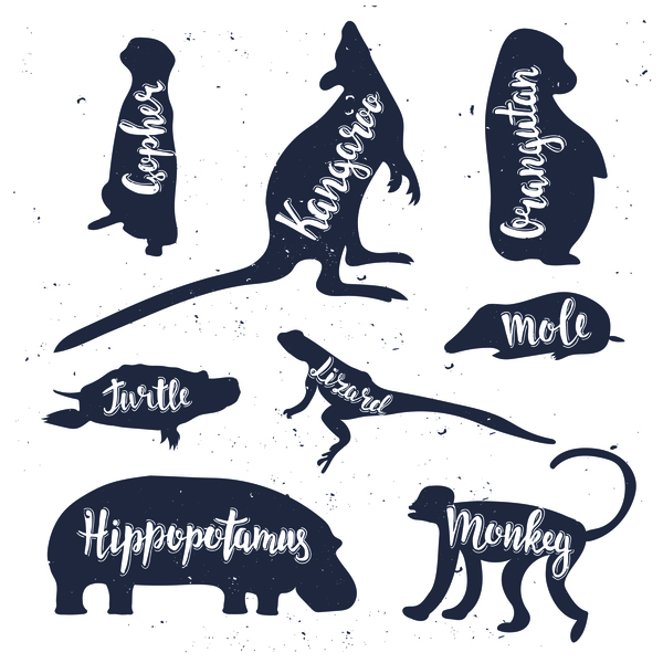 silhouette name animals