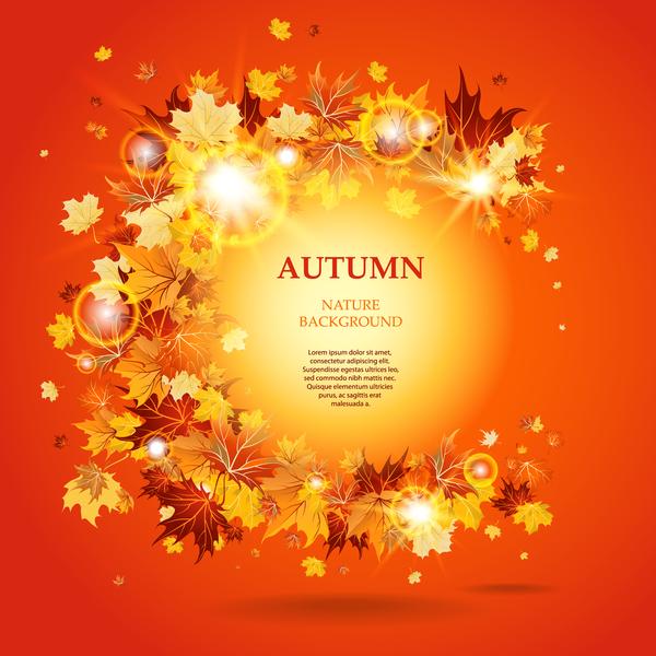 shining light circles autumn leaves autumn