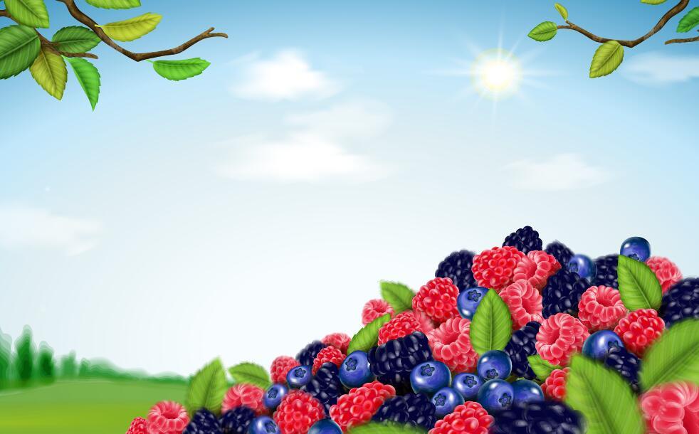 Blend Berry
