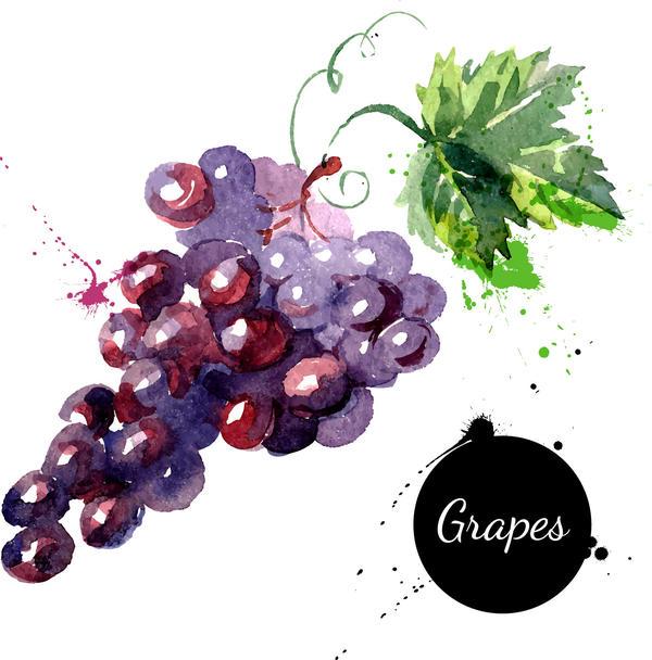 watercolor grunge grapes