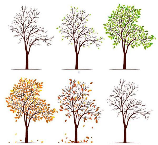 träd Abstrakt