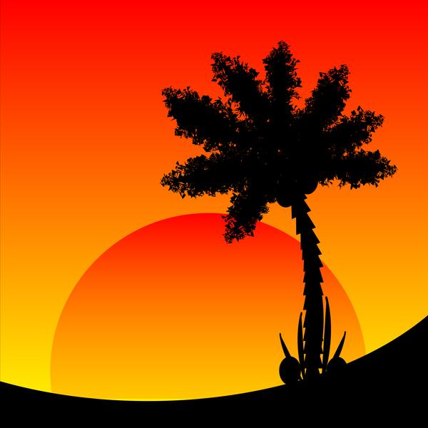 sunset siluett Afrika