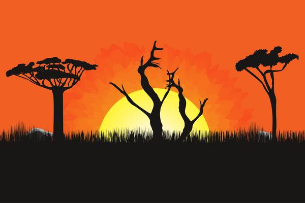 sunset landscape beautiful africa