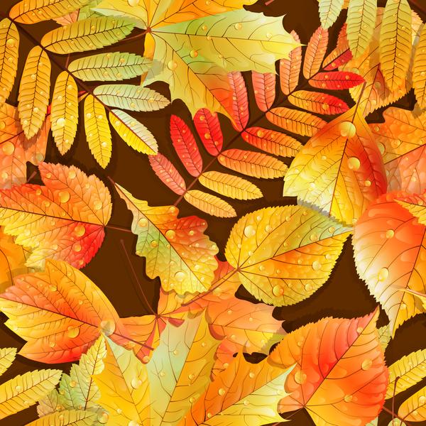 senza soluzione di continuità pattern foglie cadere Bella autunno acqua