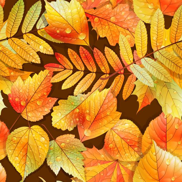 sans soudure modèle feuilles eau drop Beau automne