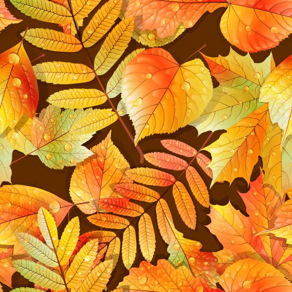 Wasser Schön nahtlos Muster Herbst fallen Blätter