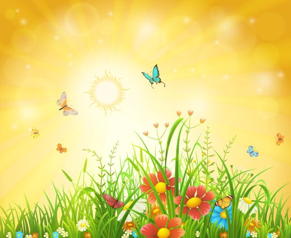 primavera fiori Farfalle Bellissima