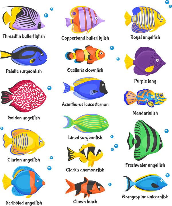 Vacker tropiska fisk