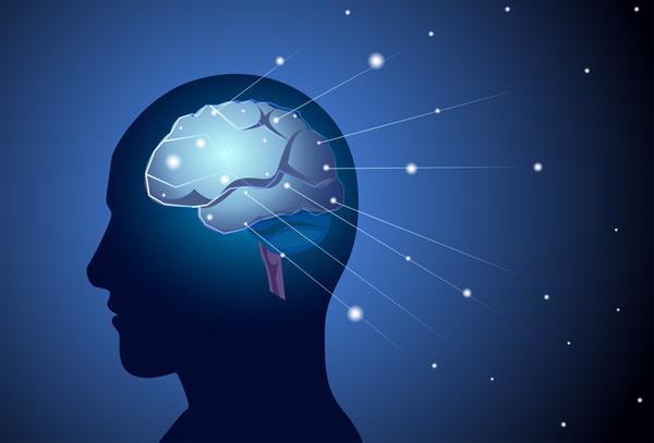 linjer hjärnan cell beskrivning