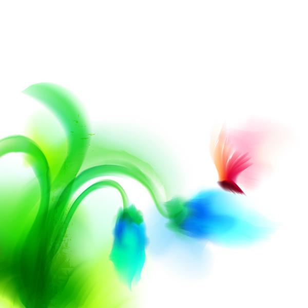 Schmetterling Blume blrus