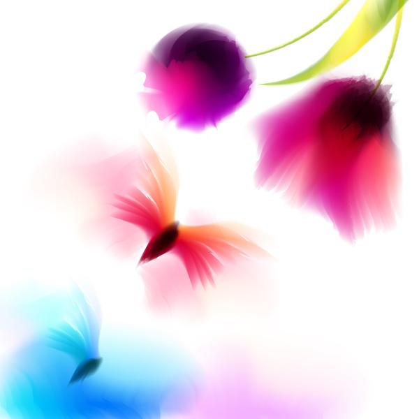 papillon fleur blrus
