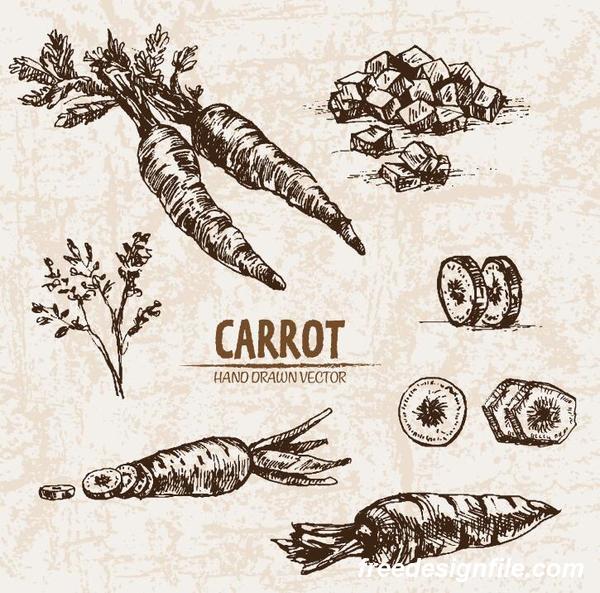 retor hand carrot