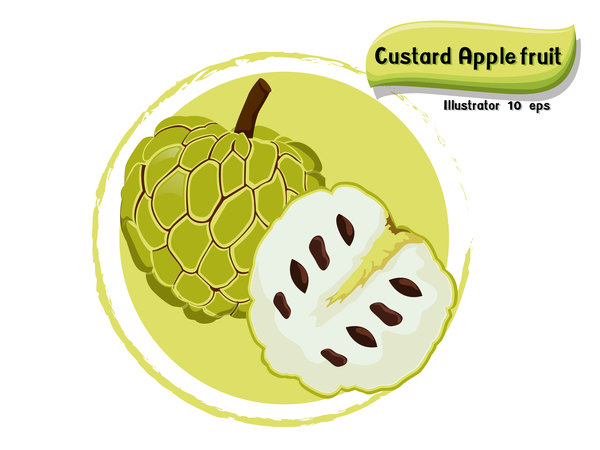 Pudding Obst apple