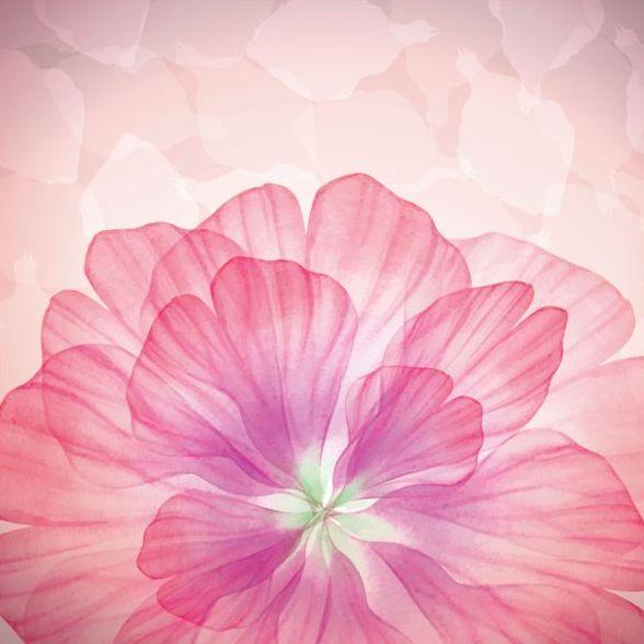 Rosa dröm Blomma