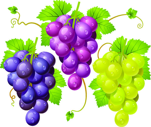 grapes fresh
