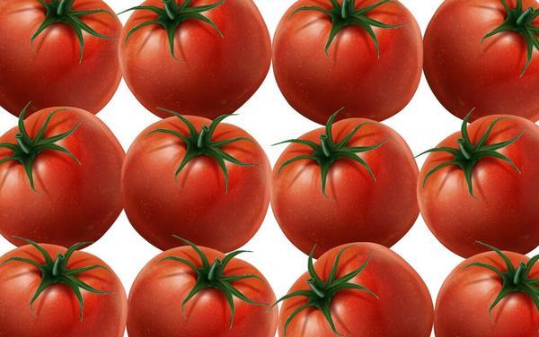 Tomate fraîche tendance