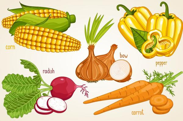 name Gemüse Frisch