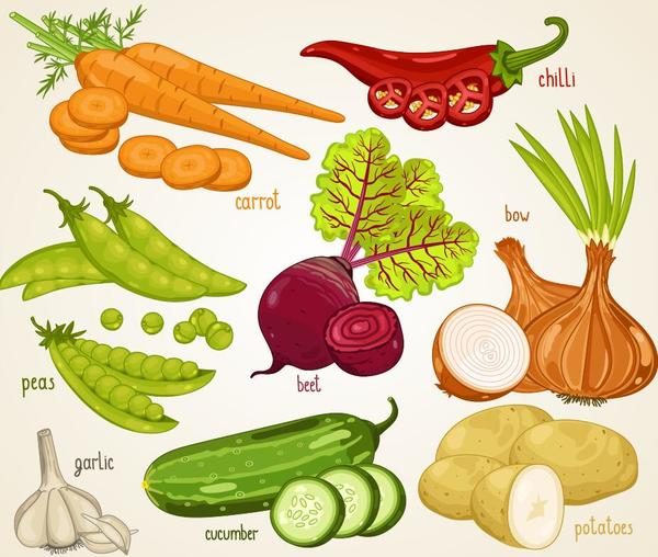 、新鮮な、名前、野菜