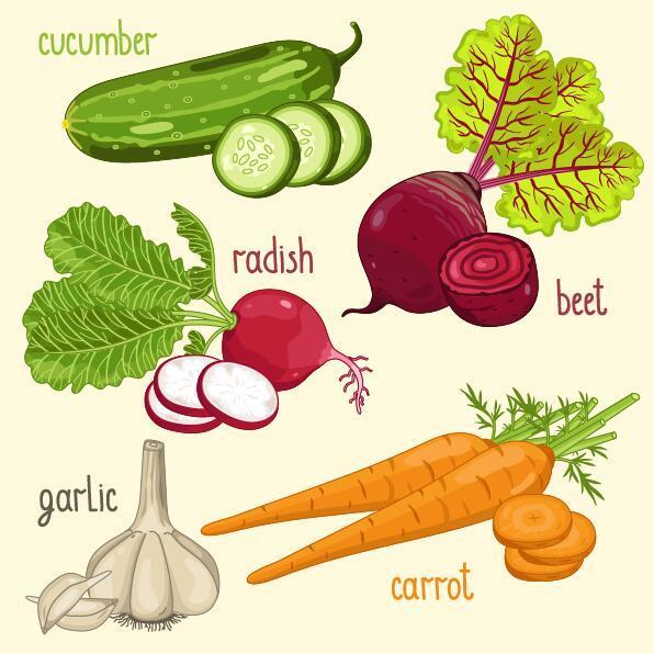 namn grönsaker Färska