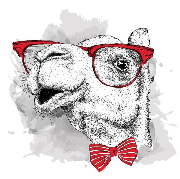 glasses funny camel