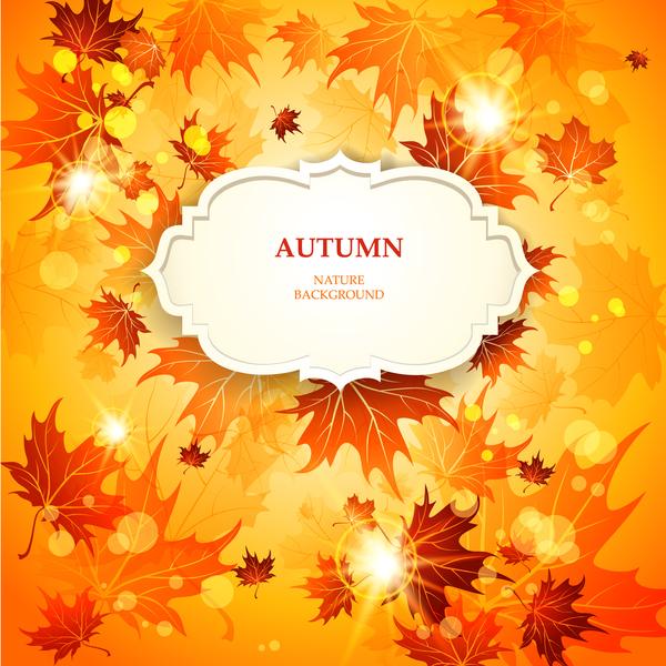 weiß label Herbst gold Blätter