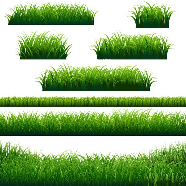 Rasen grün Borten