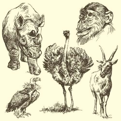 main Dessin animal