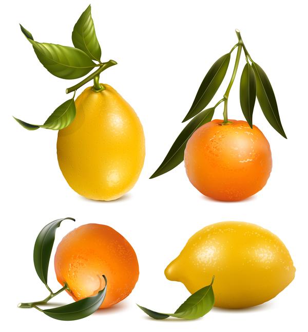 Zitrus Zitrone