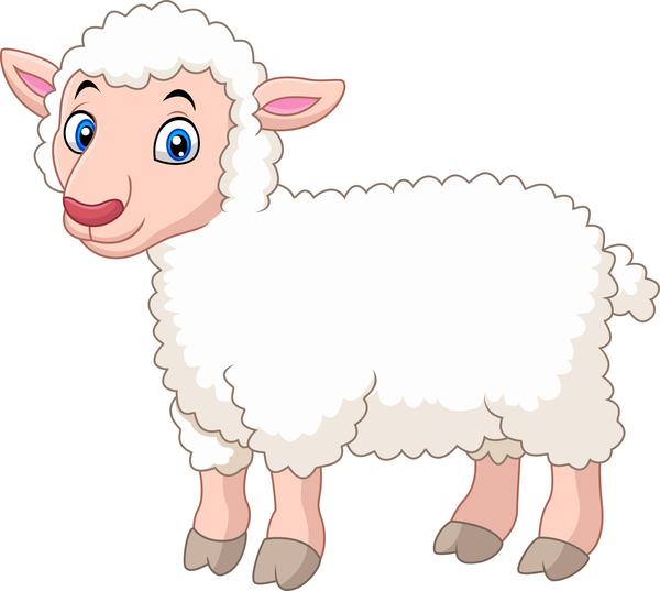 wenig Schafe cartoon