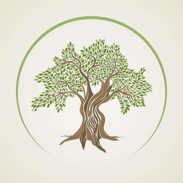 träd oliv