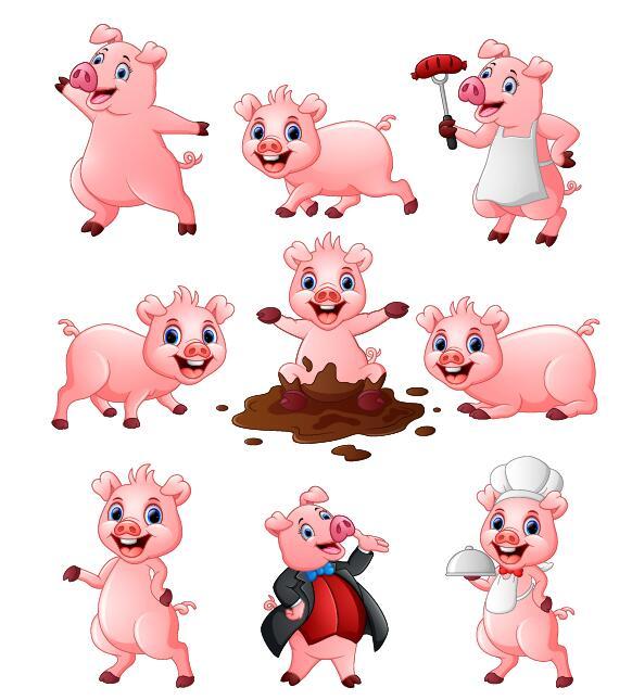 Vector mignon de cochon dessin anim personnage welovesolo - Dessin cochon mignon ...