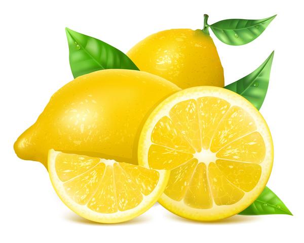、レモン、現実的な