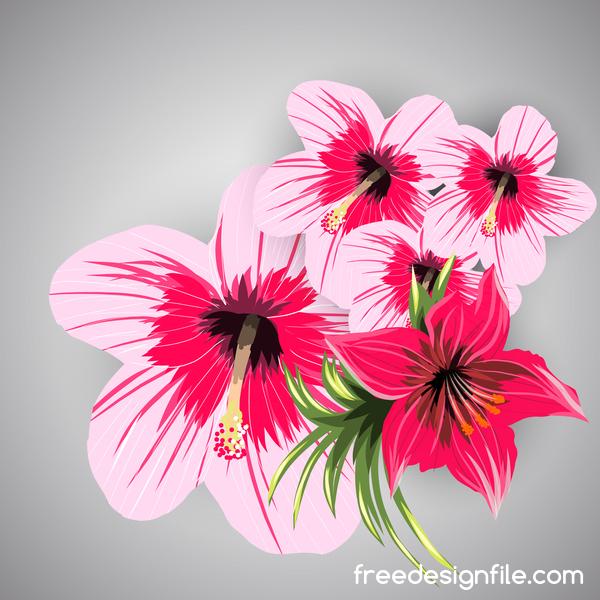 tropiska Rosa rod blommor
