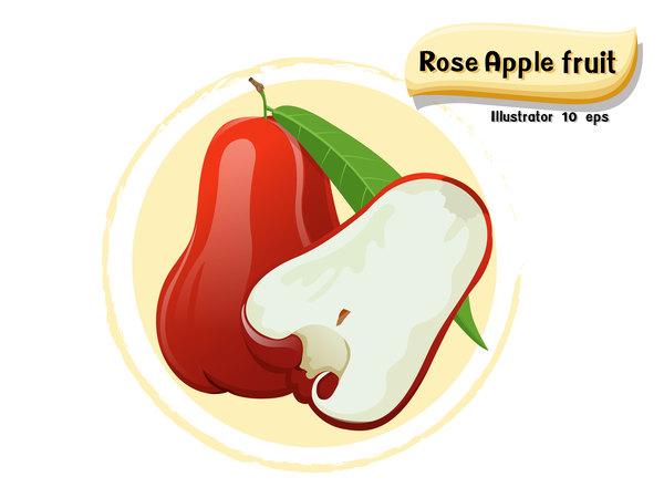 Rosen Obst Apfel