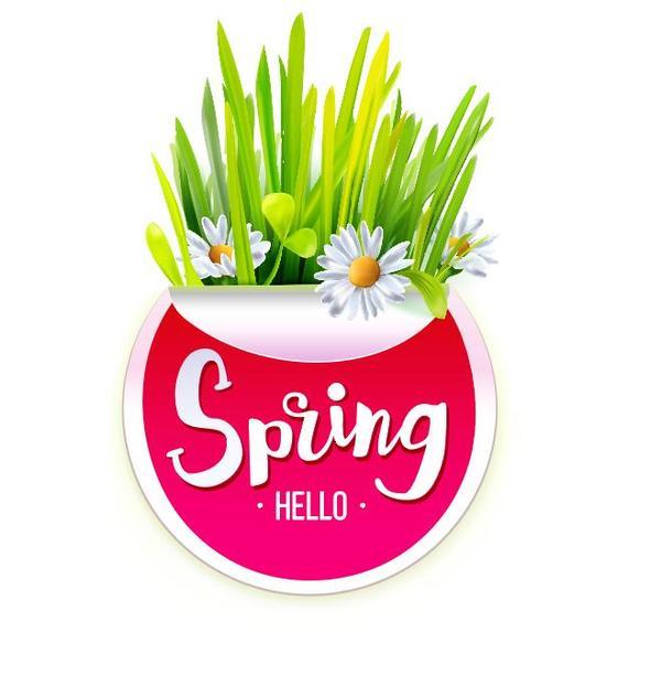 vit våren klistermärke Blomma