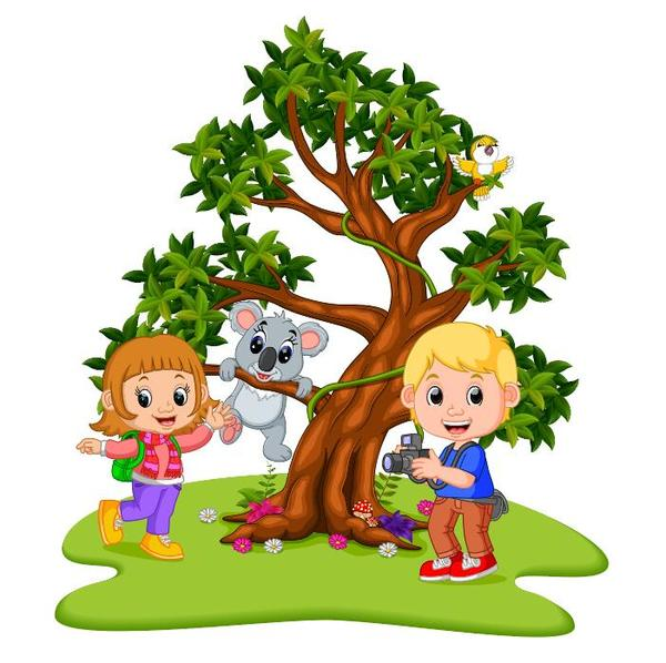 koala due cartoni animati bambini