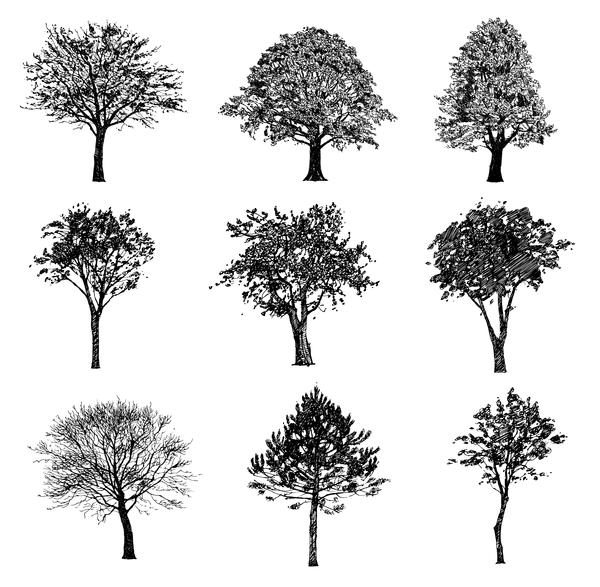 träd siluett Olika