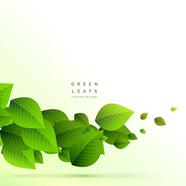 verde foglie