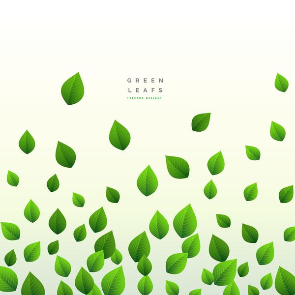 grün Blätter