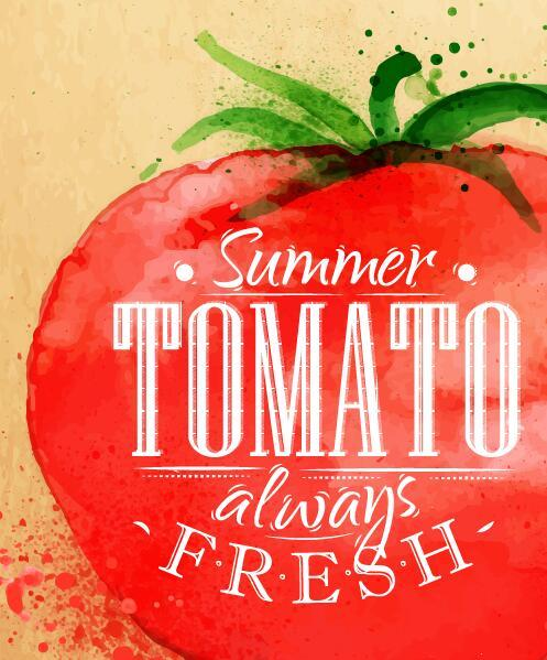 tomat ritad akvarell