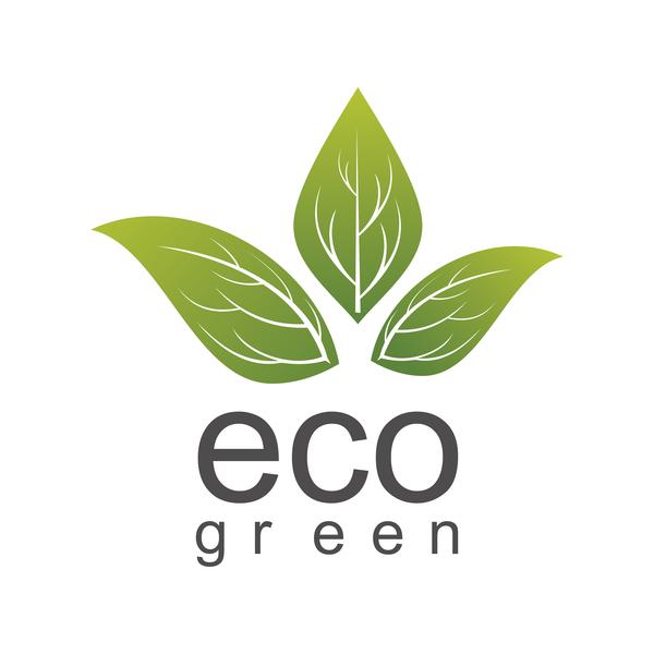 grünes Blatt green eco