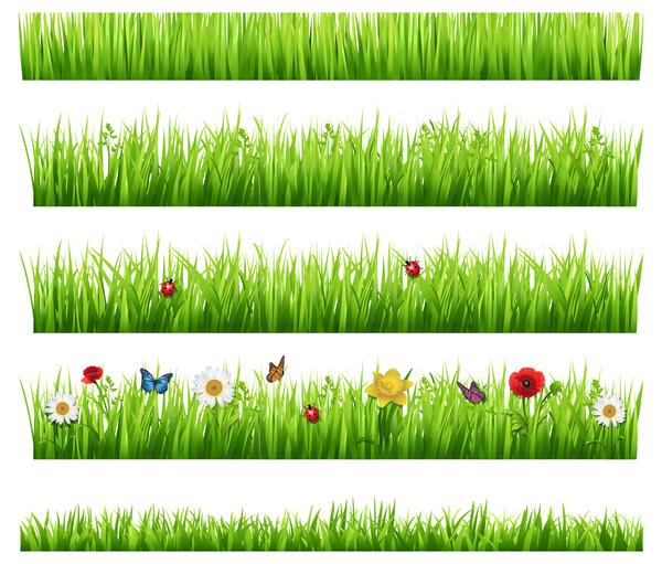 grass flower borders