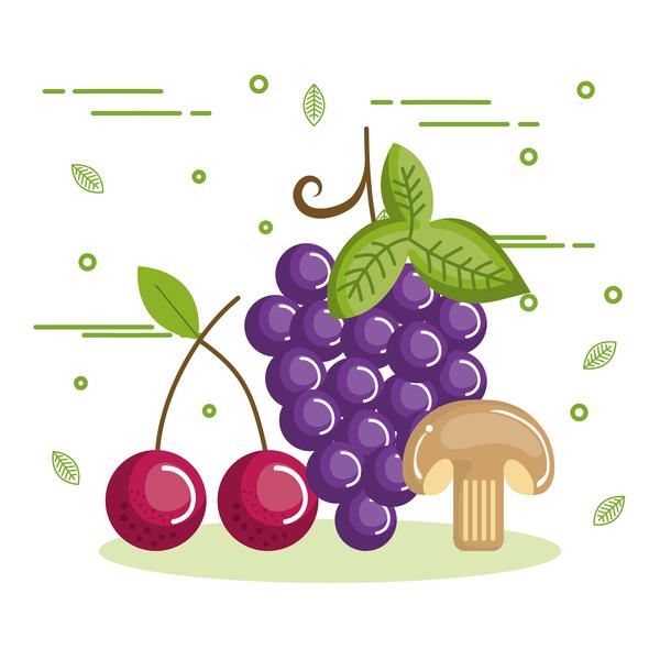 、果物、健康、キノコ