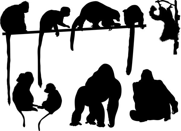 猿 シルエット 、キツネザル