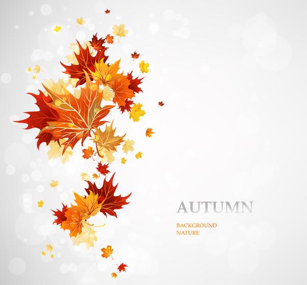 simple feuilles de l'automne