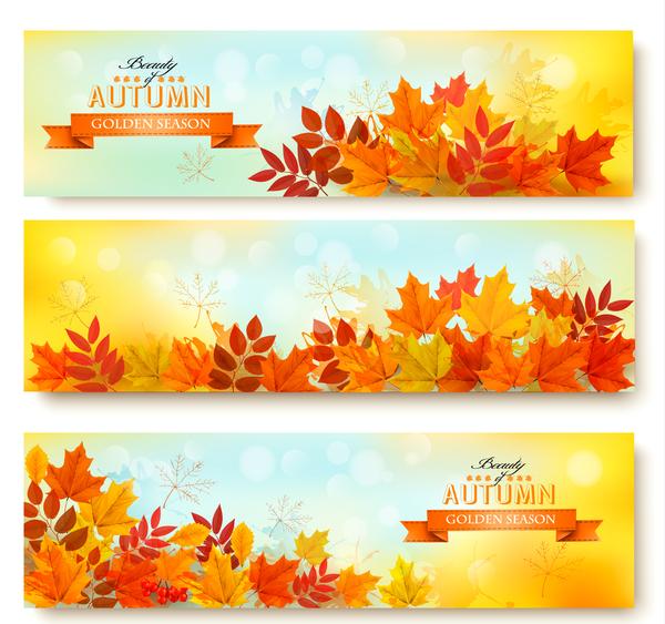 trois nature l'automne feuilles des bannières
