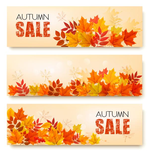 vente trois nature l'automne Des feuilles des bannières