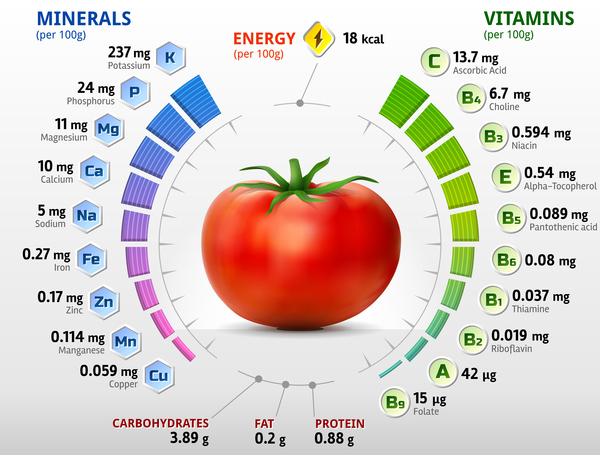 vitaminer tomat infographics