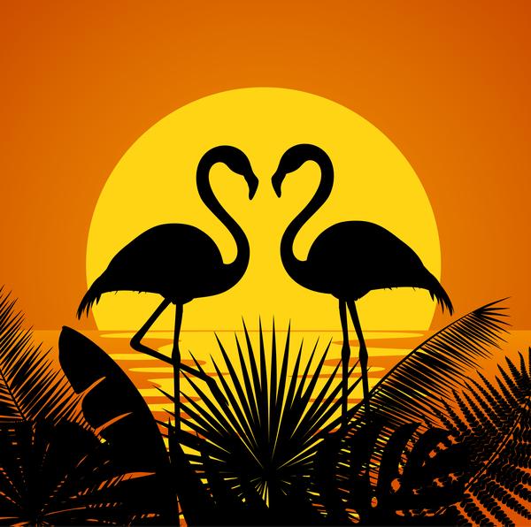 Tropic sunset flaming